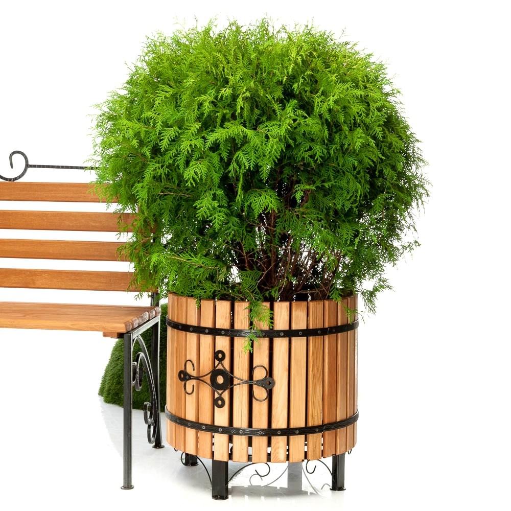 Деревянная кадка