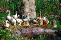 Фигурки для сада утки и гуси